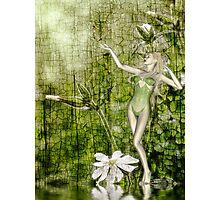 White Elf - John Edwards & Rose Photographic Print