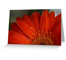Hot Floral Greeting Card