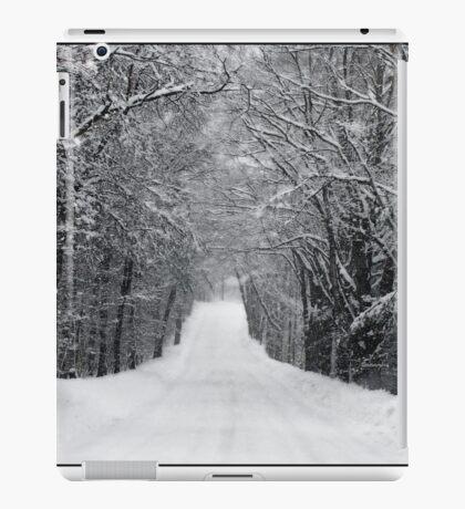 Dumprun Snowstorm iPad Case/Skin