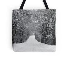 Dumprun Snowstorm Tote Bag