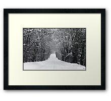 Dumprun Snowstorm Framed Print