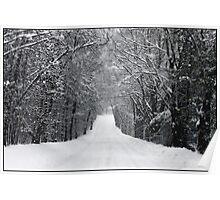 Dumprun Snowstorm Poster