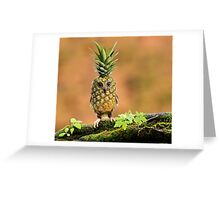The Pineappowl Greeting Card