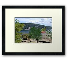 901-Double Watch Framed Print