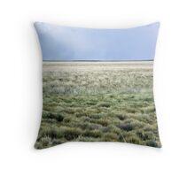 Plains Throw Pillow