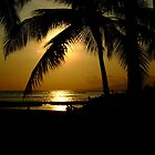 Hawaiian sunset by LenitaB