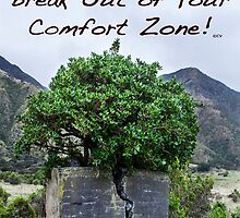 Break Out of Your Comfort Zone by YsWoman