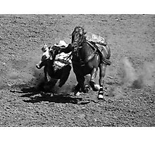 Bulldoggin' Photographic Print