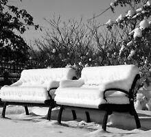 Snow Cushions by Roger  Swieringa