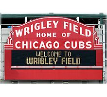 Cubbies Forever Photographic Print