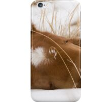 Snow Blanket iPhone Case/Skin