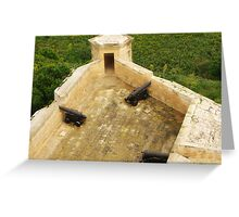 Citadel Guns  Greeting Card
