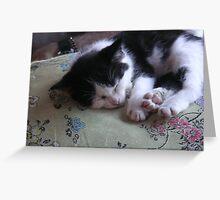 sleeping kitten Greeting Card