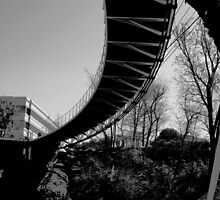 foot bridge by blackbeardashe