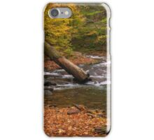 Stream Bed iPhone Case/Skin