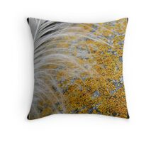 Rock and feather Throw Pillow