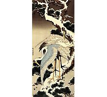 'Two Cranes on a Pine Covered with Snow' by Katsushika Hokusai (Reproduction) Photographic Print