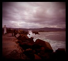 little lighthouse and breakwater by Juilee  Pryor