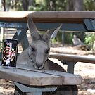 """Even roos """"can't beat the feeling"""" by Tim Bates"""