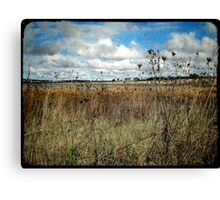 Thunderbolt Country Canvas Print