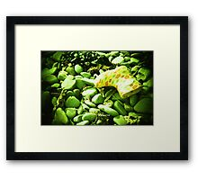 Lost Boot Framed Print