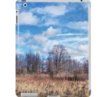 Winter Sky iPad Case/Skin