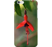 Single Wild Fuchsia Flower, Loch Na Fooey iPhone Case/Skin