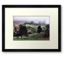 A Country Life Framed Print
