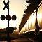 Sunset Trains