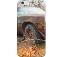 Z28 Resting Place iPhone Case/Skin