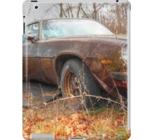 Z28 Resting Place iPad Case/Skin