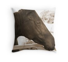 Pretty black mare Throw Pillow