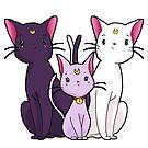 Sailor Cats!  by Bantambb