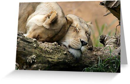 Lean on Me by Angela Stewart