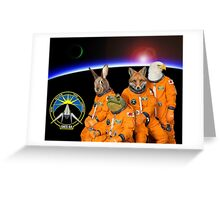 The Lylat Space Program Greeting Card