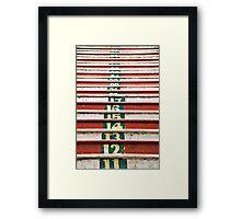 Batu cave steps Framed Print