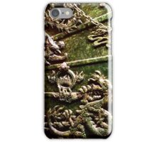 Jade Carved Chinese Ship Model iPhone Case/Skin