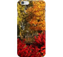 The Colors of Fall 2014 iPhone Case/Skin
