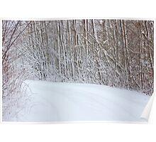 Winter's Spell I Poster