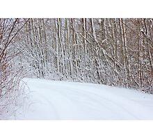 Winter's Spell I Photographic Print