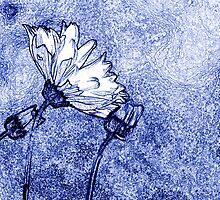 Cornflower by cherryannette