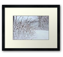 Winter's Spell III Framed Print