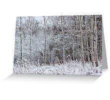Winter's Spell IV Greeting Card