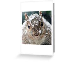 snowed Greeting Card