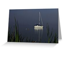 Early morning mist on the Clarence River Greeting Card