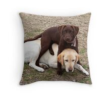 Care For A Sit? Throw Pillow