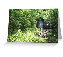 unexpected waterfall Greeting Card