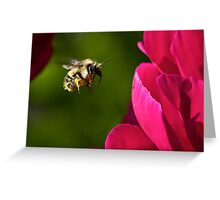 Busy Bee 2 Greeting Card
