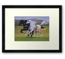 Kirstie's Horses Framed Print