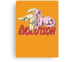 Evolution v2 Canvas Print